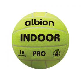 Albion Indoor Football