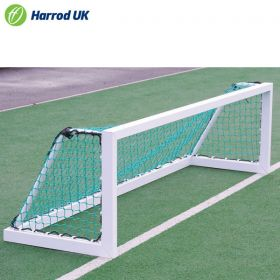 Hockey Mini Training Goal
